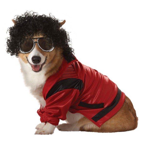 Tienes Mascota 35 Disfraces Para Mascotas En Halloween
